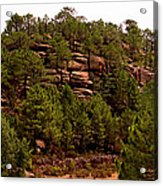 Red Rock Green Forest No3 Acrylic Print