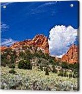 Red Rocks In Colorado Acrylic Print