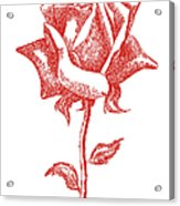 Red Rose Art 1 Acrylic Print