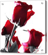 Red Rose Color Block 2 Acrylic Print