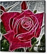 Red Rose Expressive Brushstrokes Acrylic Print