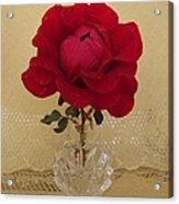red rose III Acrylic Print