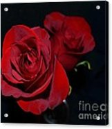 Red Roses For A Blue Lady Acrylic Print