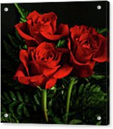 Red Roses Acrylic Print by Sandy Keeton