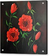 Red Roses Weeping Acrylic Print