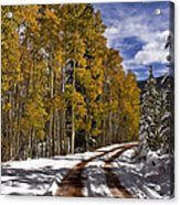 Red Sandstone Road In October Acrylic Print