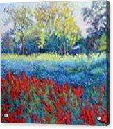 Red Season Acrylic Print
