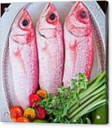 Red Snappers Acrylic Print
