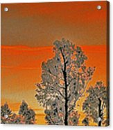 Red Sunset With Trees Acrylic Print