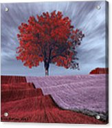 Red Tree In A Field Acrylic Print