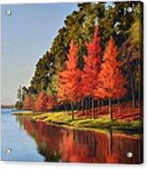 Red Trees Acrylic Print