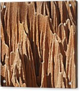 red Tsingy Madagascar 5 Acrylic Print