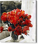 Red Tulips In Window Acrylic Print