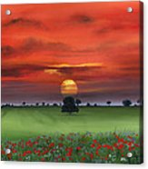 Red Tuscan Sunrise With Poppy Field Acrylic Print