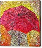 Red Umbrella Acrylic Print