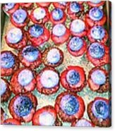 Red Velvet Superbowl Cupcakes Acrylic Print by Lexa Newman