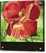 Red Vibrations Poppy Acrylic Print