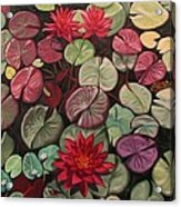 Red Water Lilies Acrylic Print