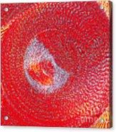 Red Whirlpool Acrylic Print