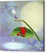 Redfrog And The Dragonfly Acrylic Print