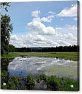 Redtail Lake At Steigerwald Natinal Wildlife Refuge Acrylic Print by Lizbeth Bostrom