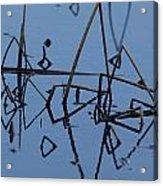 Reed Reflection Acrylic Print