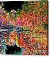 Reedy Creek Nc 3 Acrylic Print