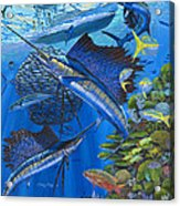Reef Frenzy Off00141 Acrylic Print