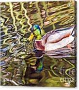Reflected Acrylic Print