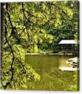 Reflecting On The Beauty Of The Woodlands Acrylic Print