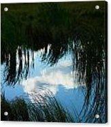 Reflecting The Grass Acrylic Print