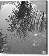 Reflection 002 Acrylic Print