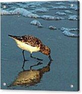 Reflection At Sunset Acrylic Print