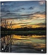 Reflection At Sunset With Cattails Acrylic Print