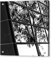 Mirror Image Palm Springs Acrylic Print
