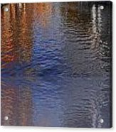 Reflection In Canal Acrylic Print