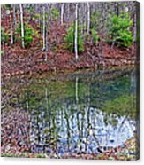 Reflection In The Lake Acrylic Print