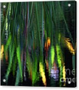 Reflection In The Pond Acrylic Print