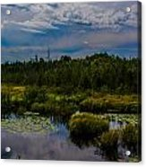 Reflection In The Swamp Acrylic Print