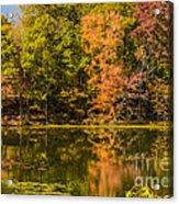 Reflection Of Autumn Acrylic Print
