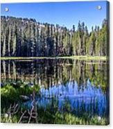 Reflections At Its Best Acrylic Print