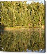 Reflections - Canisbay Lake - Detail Acrylic Print