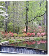 Reflections Acrylic Print by Eggers Photography