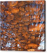 Reflections Acrylic Print by Eric Rundle