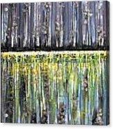 Reflections IIi Acrylic Print by Dan Earle