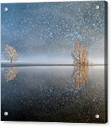 Reflections In A Lake In Winter, French Acrylic Print