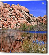 Reflections In Barker Dam By Diana Sainz Acrylic Print
