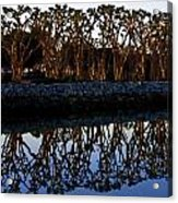 Reflections In First Light Acrylic Print