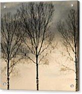 Reflections In Grey II Acrylic Print