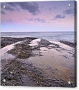 Reflections In Pink Acrylic Print